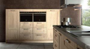 Placard de cuisine contemporain en bois, les compagnons du placard